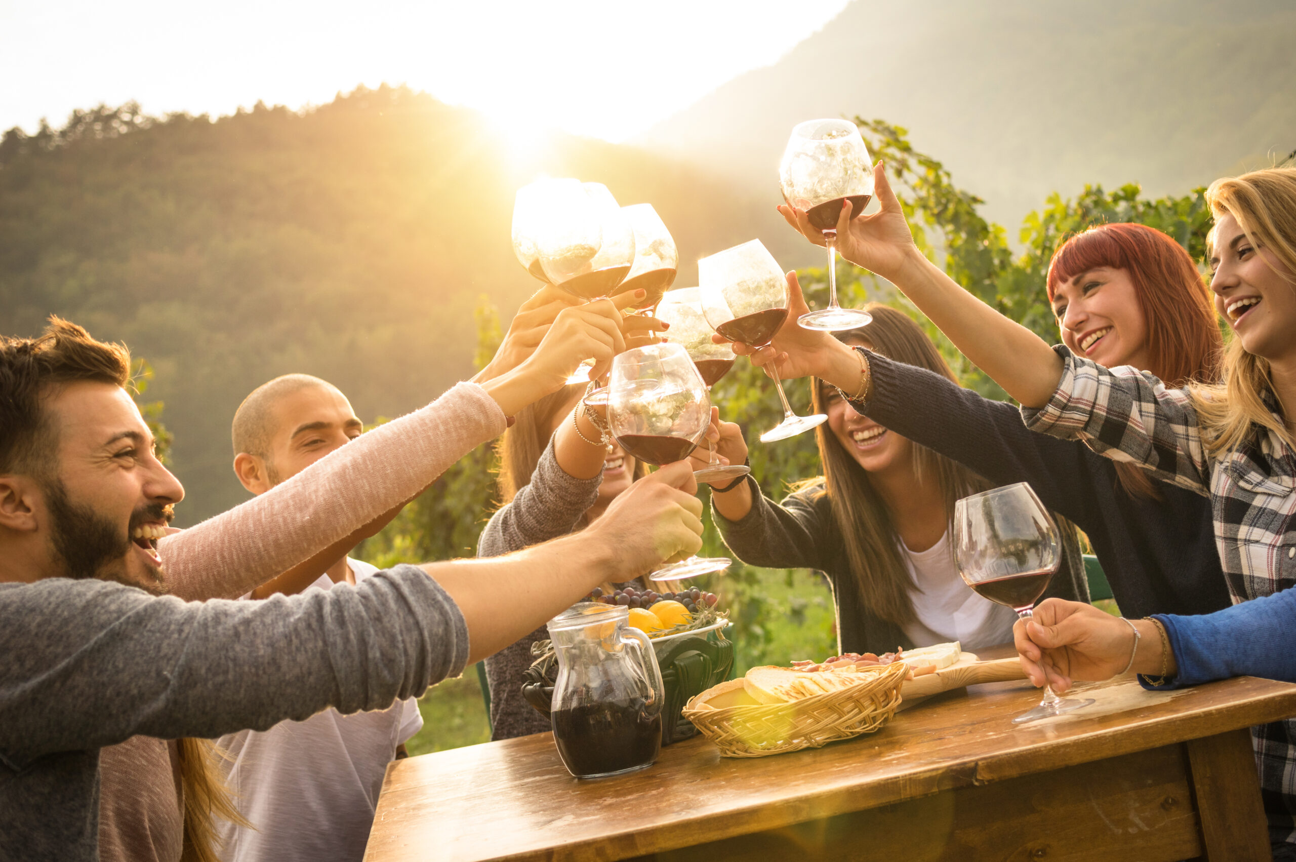 Group of Wine Drinkers